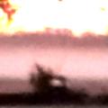fog rising (clip)