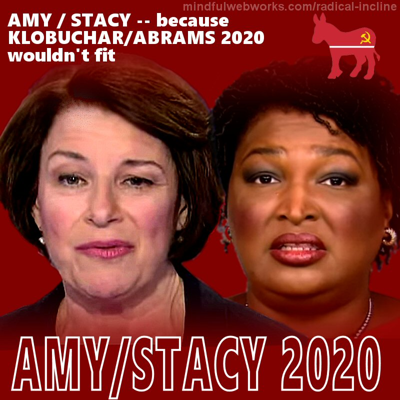 Amy/Stacy 2020