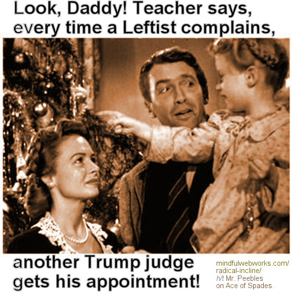 Look Daddy! Every time a Leftist complains…