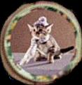 Umbridge Kitty Plate